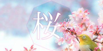 「桜」にまつわるおすすめ文学|「桜」の文学を楽しもう
