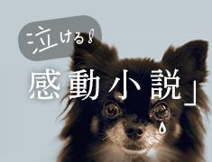 泣ける!「感動小説」特集