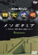 NHKスペシャル 四大文明 第二集「メソポタミア~それは一粒の麦から始まった~」(通常)(DVD)