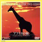 ナショナル・ジオグラフィック アフリカの掟(通常)(DVD)