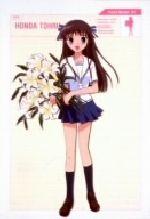 フルーツバスケット Vol.1(初回限定全巻収納BOX付仕様)((全巻収納BOX付仕様))(通常)(DVD)