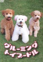 グルーミング トイプードル(通常)(DVD)