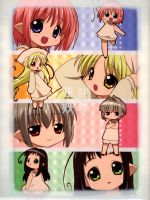 瓶詰妖精DVD-BOX  Bottle fairy box(外ケース、CD-ROM1枚、ブックレット付)(通常)(DVD)