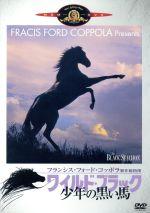 ワイルド・ブラック 少年の黒い馬(通常)(DVD)