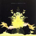 Last Live 無未来 NO FUTURE(通常)(DVD)