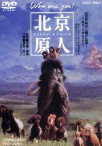 北京原人 Who are you?(通常)(DVD)