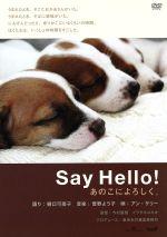 Say Hello!あのこによろしく。(通常)(DVD)