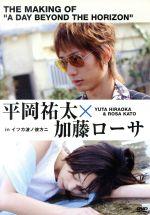 平岡祐太☆加藤ローサ in 「イツカ波ノ彼方ニ」(通常)(DVD)