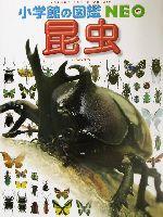 昆虫(小学館の図鑑NEO3)(児童書)