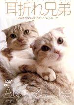 耳折れ兄弟 スコティッシュフォールド・アトム&ルーク(通常)(DVD)