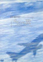 旅客機 進化する翼(通常)(DVD)