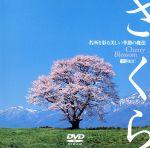 さくら 名所を彩る美しい季節の魔法(通常)(DVD)