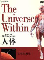 NHKスペシャル 驚異の小宇宙 人体 生命誕生(通常)(DVD)