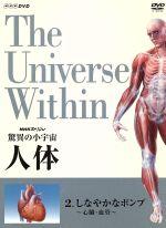 NHKスペシャル 驚異の小宇宙 人体 しなやかなポンプ〈心臓・血管〉(通常)(DVD)