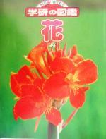 花(ニューワイド学研の図鑑)(児童書)