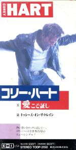 【8cm】愛こそ証し(通常)(CDS)