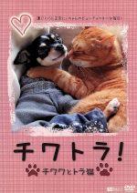 チワトラ!チワワとトラ猫★凛と正宗にぃちゃんのビューティフォーな毎日!(通常)(DVD)