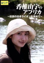 香椎由宇のアフリカ~伝説の白きライオンを求めて~(通常)(DVD)