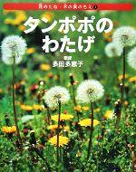 タンポポのわたげ(花のたね・木の実のちえ1)(児童書)