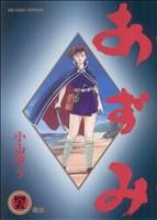あずみ 第一部(45)(ビッグC)(大人コミック)