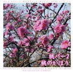 ウェブラジオ 桃のきもち・パーフェクトCD 桃パー2・桃のかほり(通常)(CDA)