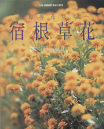 趣味の園芸別冊 毎年花咲く宿根草花(別冊NHK趣味の園芸)(単行本)