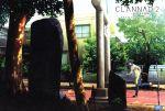 CLANNAD AFTER STORY(2)(初回限定版)((ブックレット、ハンカチ、カード付))(通常)(DVD)