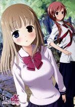 咲-Saki-9(通常)(DVD)