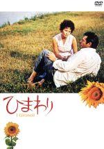 ひまわり(通常)(DVD)