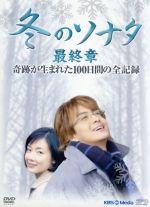 冬のソナタ 最終章 奇跡が生まれた100日間の全記録(通常)(DVD)