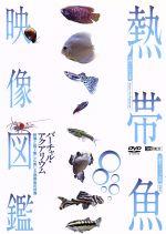 シンフォレストDVD 熱帯魚映像図鑑 バーチャル・アクアリウム 映像と音で愉しむ美しき熱帯魚の世界(通常)(DVD)