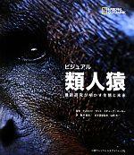 ビジュアル類人猿 最新研究が明かす生態と未来(単行本)