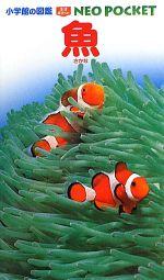 魚(小学館の図鑑NEO POCKET3)(児童書)