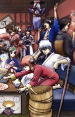 銀魂 シーズン其ノ四 13(通常)(DVD)
