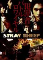 STRAY SHEEP(通常)(DVD)