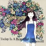 Today Is A Beautiful Day(DVD付)(初回生産限定盤)(ブックレット、オリジナルピック付)(通常)(CDA)