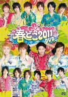 D-BOYS&D2 in 春どこ2011DVD(通常)(DVD)