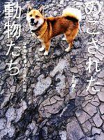 のこされた動物たち 福島第一原発20キロ圏内の記録(単行本)