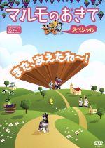 マルモのおきて スペシャル(通常)(DVD)