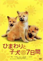 ひまわりと子犬の7日間(通常)(DVD)