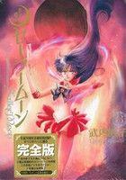 美少女戦士セーラームーン(完全版)(3)(ピースKC)(大人コミック)