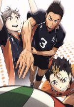 ハイキュー!! vol.3(通常)(DVD)