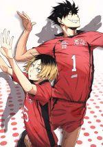 ハイキュー!! vol.4(通常)(DVD)