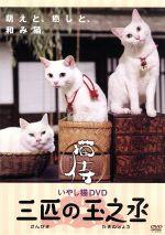いやし猫DVD 猫侍 三匹の玉之丞(通常)(DVD)