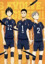 ハイキュー!!セカンドシーズン Vol.6(通常)(DVD)