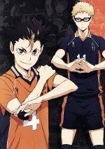 ハイキュー!! 烏野高校 VS 白鳥沢学園高校 Vol.2(通常)(DVD)