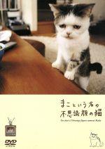 まこという名の不思議顔の猫(通常)(DVD)