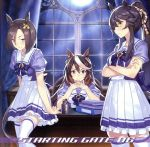ゲーム『ウマ娘 プリティーダービー』STARTING GATE 06(通常)(CDA)