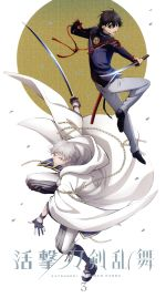 活撃 刀剣乱舞 3(完全生産限定版)(スリーブケース、ブックレット付)(通常)(DVD)
