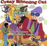 Crazy Running Cat(通常)(CDA)